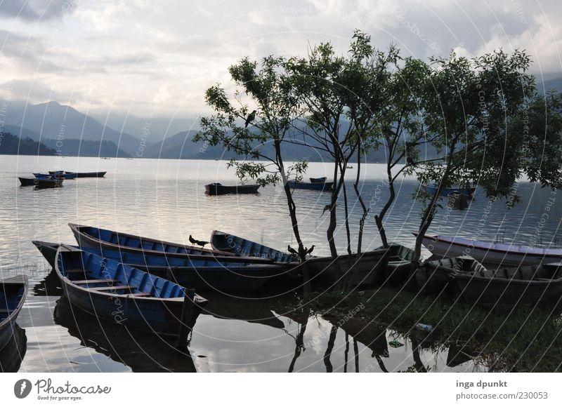 Lake Pokhara Ruderboot Umwelt Natur Landschaft Luft Wasser Herbst schlechtes Wetter Baum Berge u. Gebirge Küste Seeufer Erholung träumen einfach Reinheit