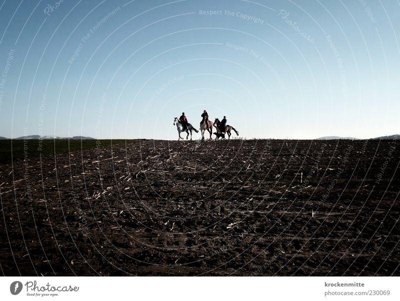 Steppenritt Reiten Natur Landschaft Feld Hund Pferd 4 Tier Tiergruppe frei blau braun Tierliebe Freiheit Menschengruppe Ferne Horizont Ausritt Pferdekopf karg