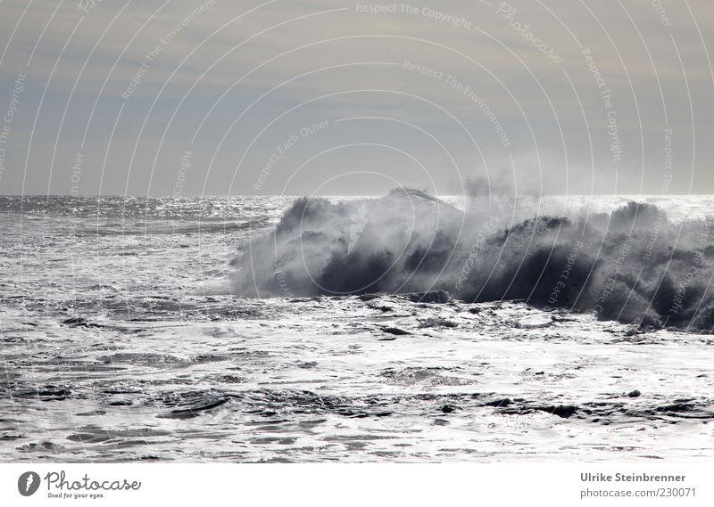 Brecher Natur Wasser weiß Meer Wolken Ferne kalt grau Bewegung Küste Horizont Wetter Wellen Kraft glänzend Klima
