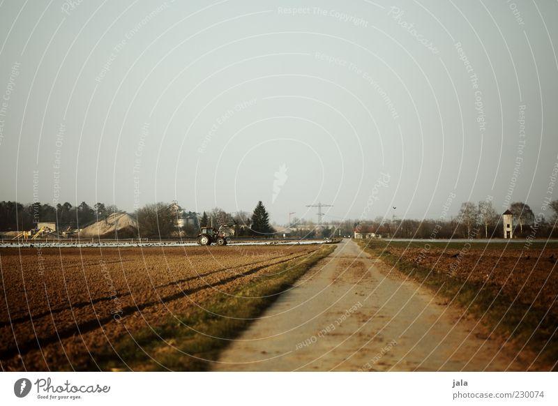 landwirtschaft Natur Pflanze Ferne Landschaft Wege & Pfade Arbeit & Erwerbstätigkeit Feld Fußweg Ackerbau Wolkenloser Himmel Traktor ländlich Landwirtschaft