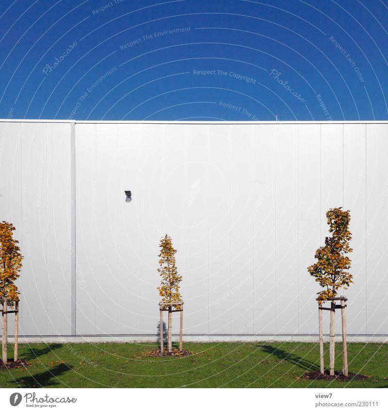 wird bestimmt schön hier. Natur Himmel Wolkenloser Himmel Schönes Wetter Baum Grünpflanze Haus Industrieanlage Fabrik Bauwerk Gebäude Architektur Mauer Wand