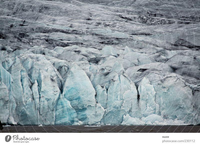 Gletscher Expedition Schnee Berge u. Gebirge Umwelt Natur Landschaft Urelemente Wasser Klima Klimawandel Wetter Eis Frost Küste außergewöhnlich fantastisch grau