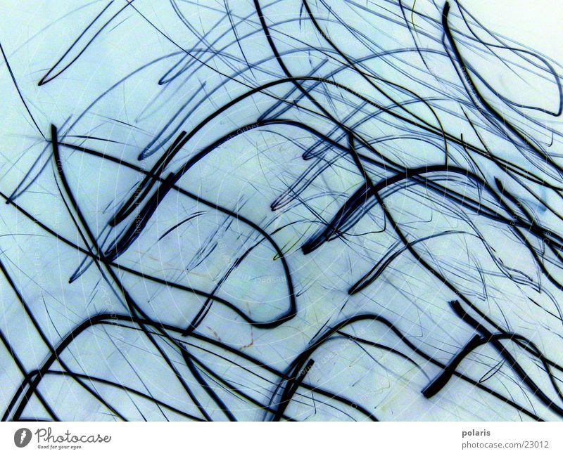 keintitel Linie Stil hell-blau Muster Fototechnik