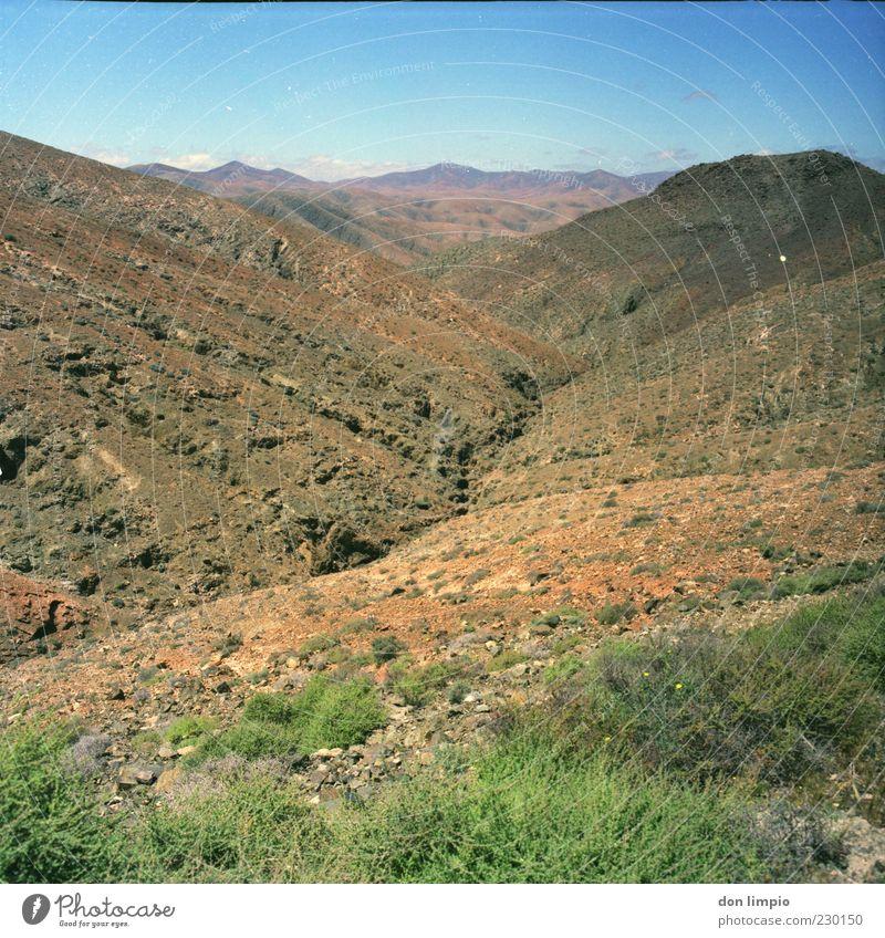 barranco de machin Ferne Umwelt Landschaft Sommer Klima Schönes Wetter Wärme Dürre Sträucher Hügel Felsen Insel Fuerteventura trocken Natur Mittelformat analog
