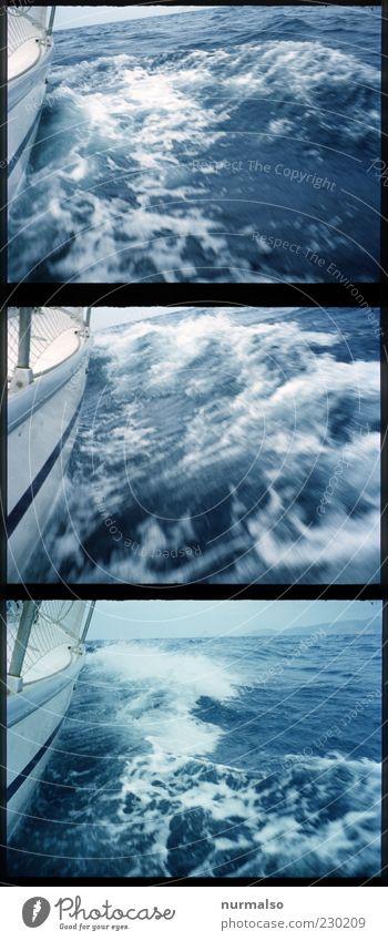 3mal volle Fahrt voraus Natur Wasser Meer Sommer Freude Erholung Freiheit Glück Wellen Wind außergewöhnlich Lifestyle Segeln Schifffahrt Wasserfahrzeug Schaum