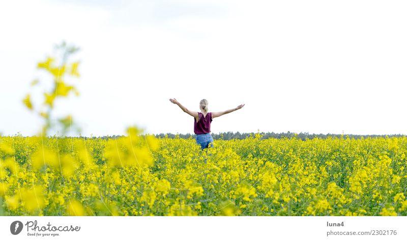 Freiheit Freude Glück schön Zufriedenheit Erholung Sommer Erfolg Junge Frau Jugendliche Erwachsene Natur Frühling Feld blond genießen lachen stehen frei