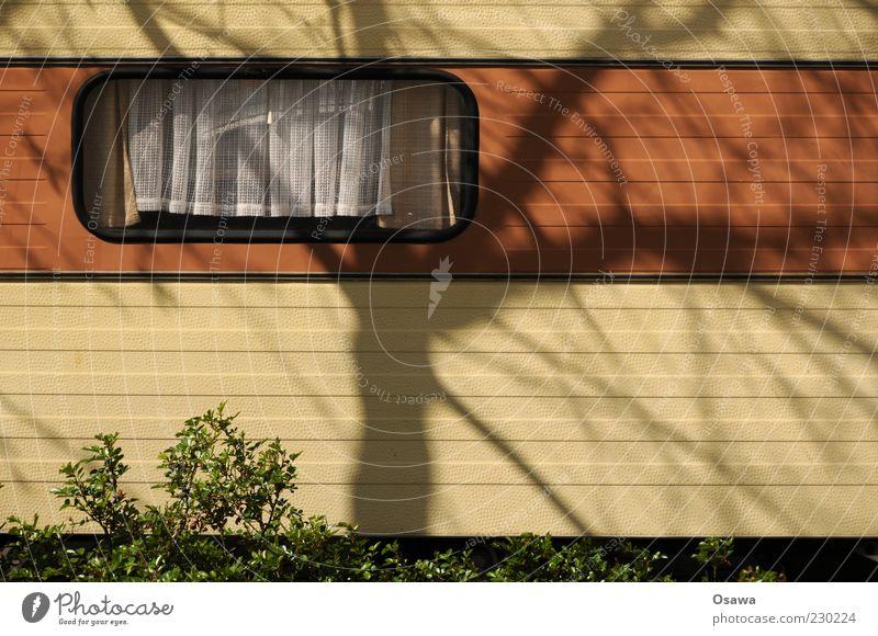 Breaking Bad Baum Fenster Freiheit braun Autofenster Streifen Sträucher Camping Vorhang Gardine Niederlande Wohnwagen Campingplatz Wohnmobil Zweige u. Äste Querformat