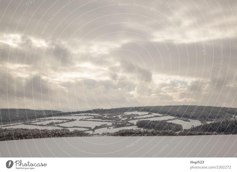 Landschaft im Winter Ferien & Urlaub & Reisen Ausflug Abenteuer Ferne Freiheit Schnee Winterurlaub Umwelt Natur Pflanze Himmel Wolken Sonne Wiese Feld Wald kalt
