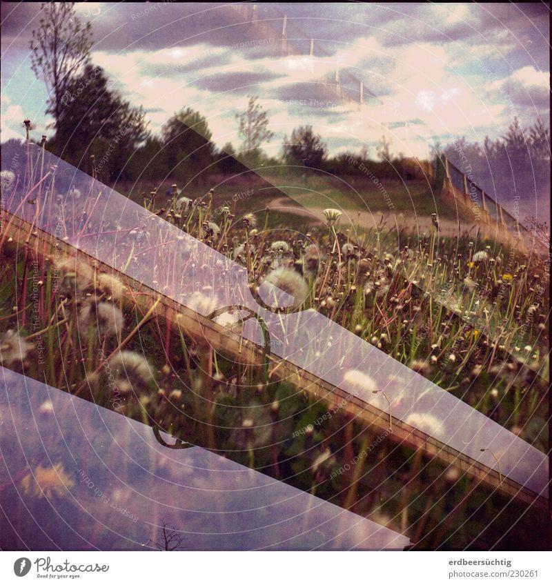 Tand, Tand - ist das Gebild von Menschenhand Himmel Natur grün Pflanze Blume Wolken Wiese Umwelt Landschaft Gras Frühling Ausflug Klima Brücke außergewöhnlich