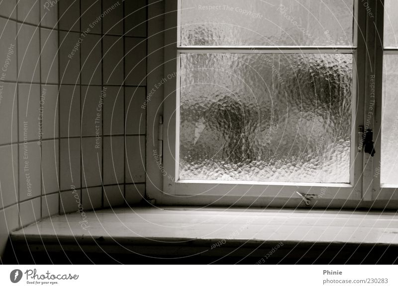 versteckte Freiheit ruhig Mauer Wand Fenster Stein Holz Glas Backstein grau schwarz weiß Fensterbrett Fliesen u. Kacheln Fensterrahmen Unschärfe Fensterkreuz