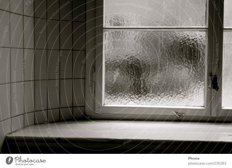 versteckte Freiheit weiß ruhig schwarz Fenster Wand grau Holz Stein Mauer Glas trist Backstein Fliesen u. Kacheln Fensterbrett Fensterrahmen Fensterkreuz