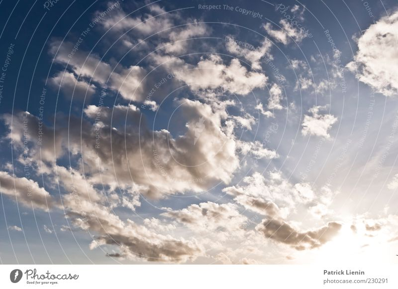 Wenn ich mir was wünschen dürfte Himmel Natur blau weiß Wolken Ferne Umwelt oben Luft Stimmung Wetter Wind Klima Hoffnung Urelemente Glaube