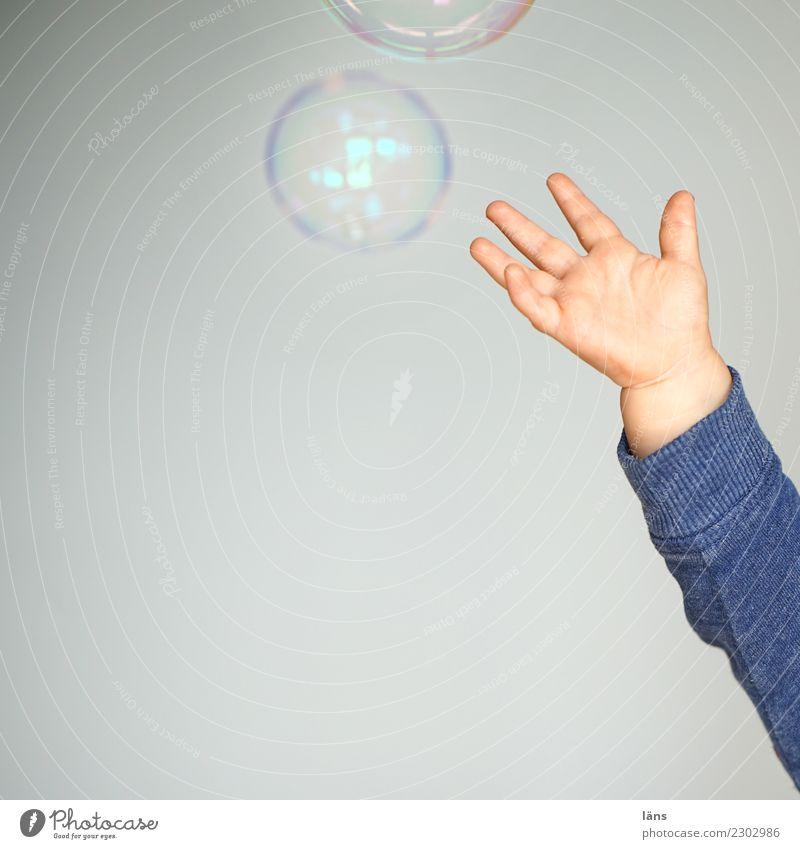 schwungvoll l Seifenblasenfänger Mensch Freude Leben Bewegung Junge fliegen Kindheit Arme Beginn Neugier Hoffnung Kleinkind fangen Leichtigkeit Sinnesorgane