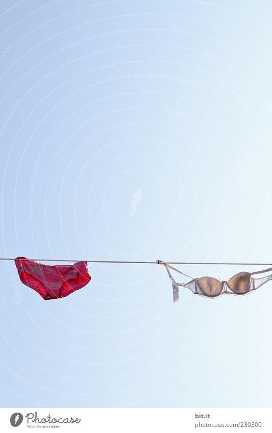 rotes Teil für die Männer Sauberkeit Wäsche Unterwäsche trocknen Unterhose Wäscheleine BH hängend Waschtag