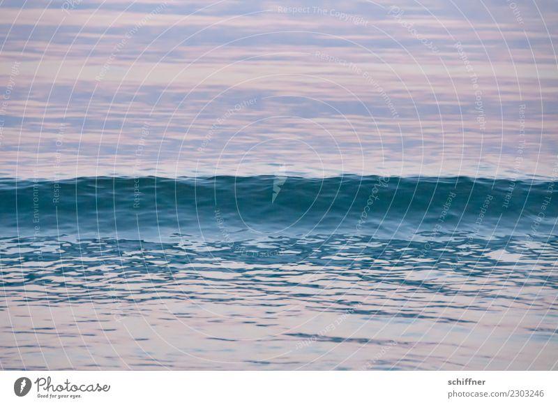 Textur | der Welle Natur Wasser Wellen Meer blau rosa Wasseroberfläche Meerwasser Atlantik Wellengang Wellenform wellig Wellenkamm Abend Abenddämmerung