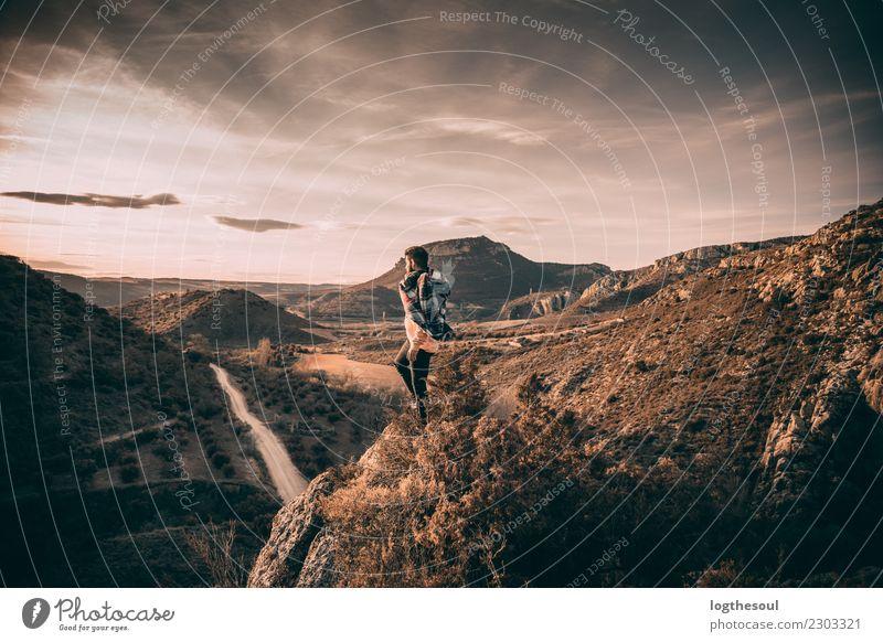 Mann, der einen Sonnenuntergang schaut Mensch maskulin Homosexualität Junger Mann Jugendliche Erwachsene Freundschaft Körper 1 18-30 Jahre Umwelt Natur