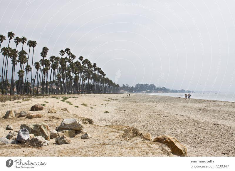 Santa Barbara Beach Sommerurlaub Strand Meer Landschaft Sand Wasser Himmel Wetter Palme St. Barbara USA Stein gehen braun Sehnsucht Fernweh Erholung