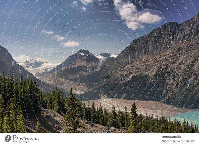 Peyto Lake Natur Landschaft Himmel Klima Baum Wald Berge u. Gebirge Gletscher Schlucht Banff National Park Kanada Menschenleer Reisefotografie Wolken Farbfoto