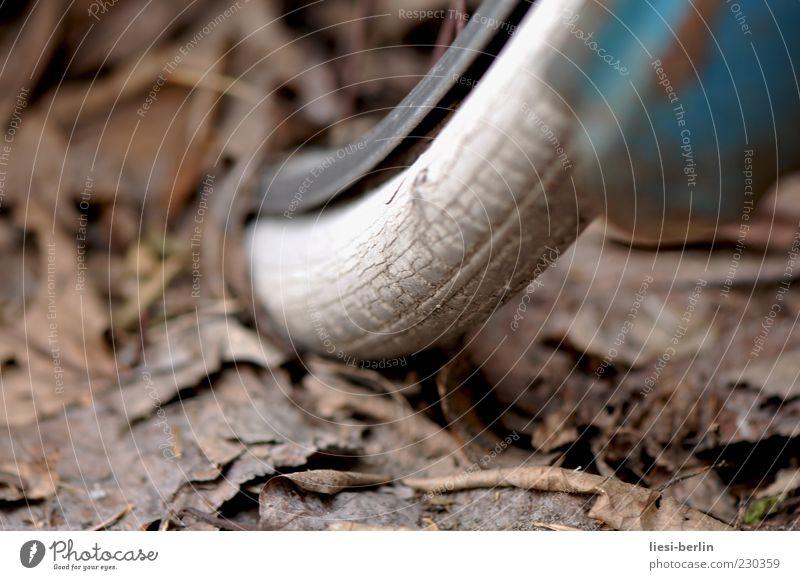Diamant Fahrrad Herbst Verfall Vergänglichkeit Reifen Fahrradreifen Gummi Felge Blatt Makroaufnahme Reifenprofil Schwache Tiefenschärfe alt Reifenpanne
