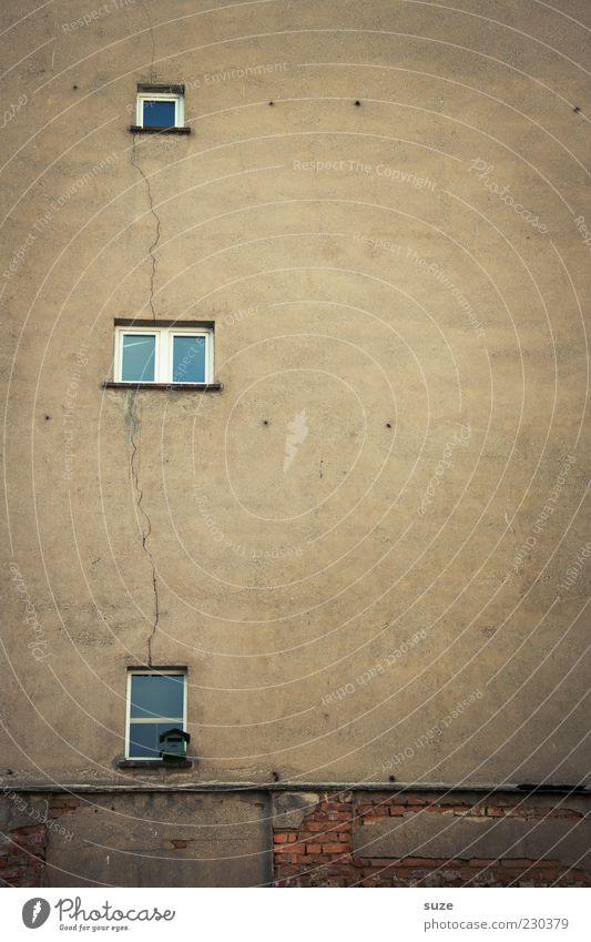 Altbau Haus Gebäude Mauer Wand Fassade Fenster Beton alt authentisch trist Verfall Vergangenheit Futterhäuschen Putz Riss Architektur braun Farbfoto
