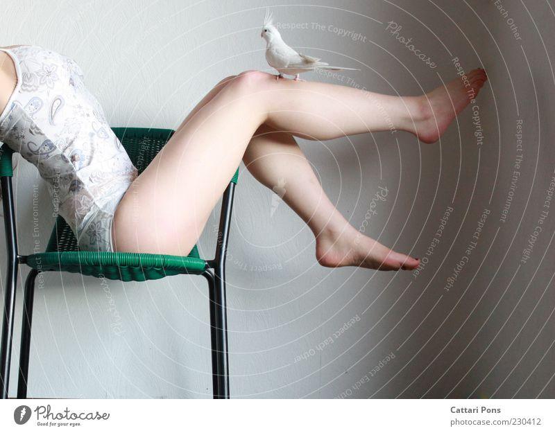 Platz nehmen Mensch Frau Jugendliche grün weiß Tier Junge Frau Erwachsene feminin Beine Fuß liegen Vogel Körper sitzen stehen