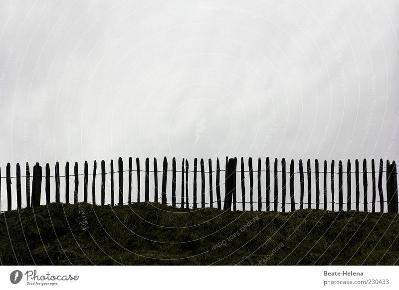 Den grauen Alltag aussperren! Natur Farbe Ferne Wiese Landschaft Holz grau braun Feld Angst gefährlich bedrohlich Sehnsucht Gelassenheit Zaun Stress