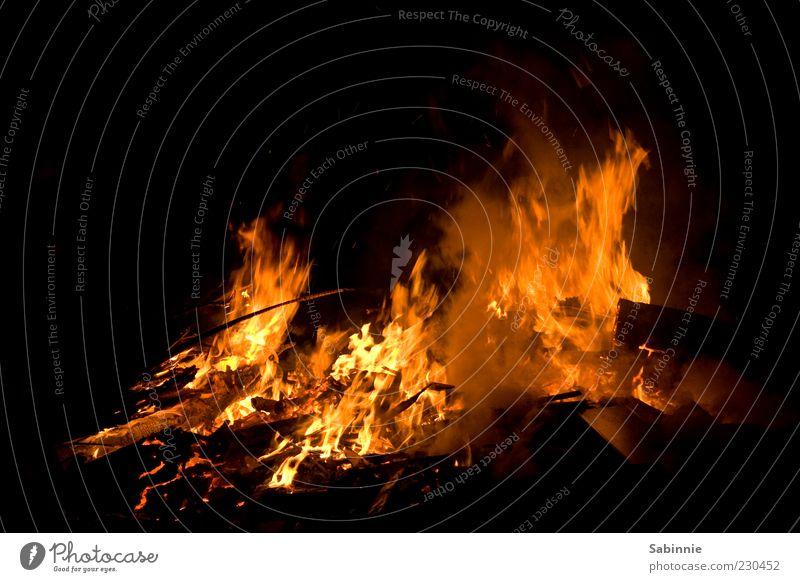 Bonfire Night Feuer Holz Kohle Nacht dunkel brennen Wind Feuerstelle Lagerfeuerstimmung Farbfoto mehrfarbig Außenaufnahme Detailaufnahme Menschenleer Licht