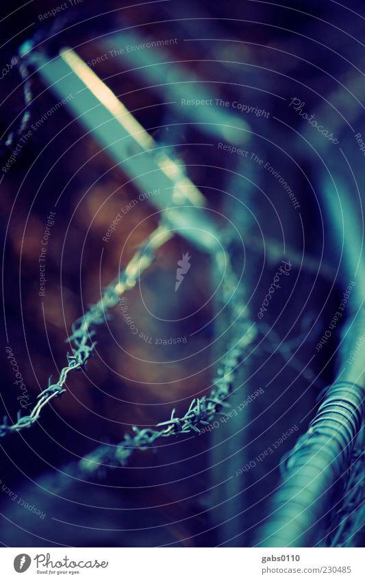 Grenze Metall bedrohlich blau braun schwarz Schutz Kontrolle Stacheldraht Stacheldrahtzaun Grenzgebiet Zaun Barriere Sicherheit Terror Justizvollzugsanstalt