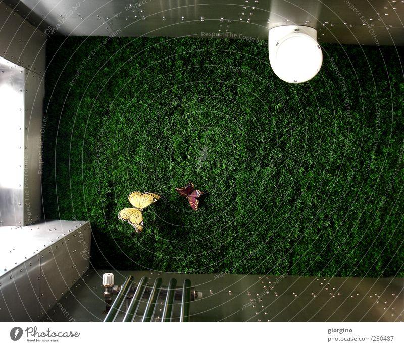 Gras ist überall Lifestyle Stil Innenarchitektur Dekoration & Verzierung Erholung innovativ Inspiration Pause Farbfoto Innenaufnahme Experiment Tag Licht