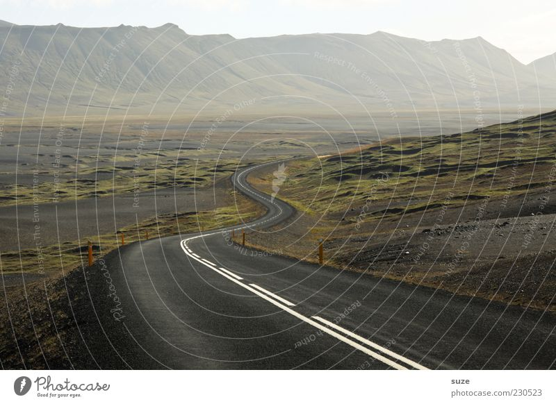 Erwartung Umwelt Natur Landschaft Nebel Berge u. Gebirge Schlucht Verkehr Straße Wege & Pfade Einsamkeit einzigartig Freiheit Ziel Island Asphalt Kurve Farbfoto