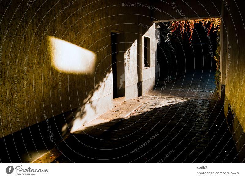 Le Tunnelblick Haus Einfahrt Tor Mauer Wand Fenster Tür leuchten Kopfsteinpflaster Efeu hängen Herbstfärbung ungewiss dunkel verrückt außergewöhnlich