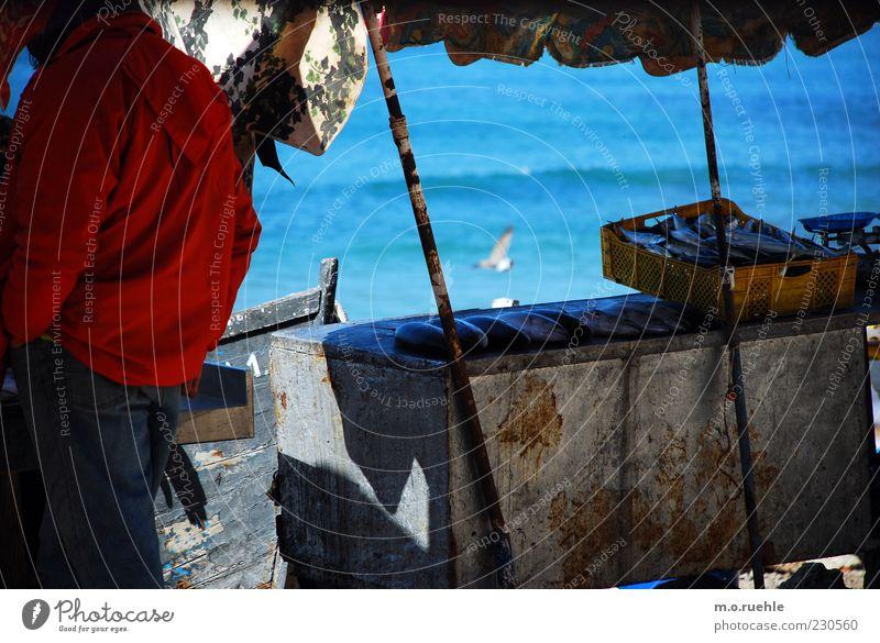 kleine fische Mensch Meer Küste Wellen frisch Fisch einfach Schönes Wetter Sonnenschirm Möwe Markt verkaufen Kiste Fischereiwirtschaft Identität Wetterschutz