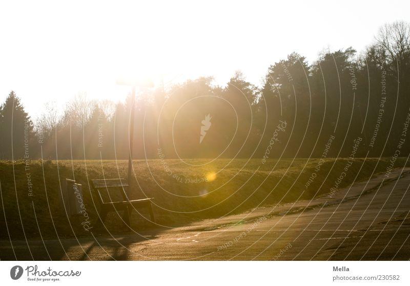 Ein Platz an der Sonne Baum Straße Wiese Umwelt Landschaft Wege & Pfade Wärme hell Schilder & Markierungen Energie leuchten Bank Sonnenenergie Blendenfleck