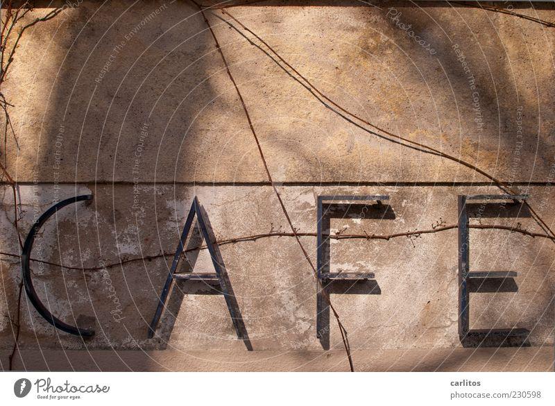 Es ist immer Zeit für einen guten Kaffee ....... alt Café Typographie Metall Buchstaben Putz braun Ranke Schatten Sonnenlicht Schilder & Markierungen