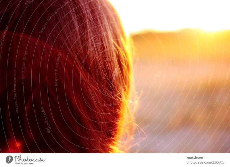 haariger Sonnenuntergang Mensch Natur Sonne Sommer ruhig gelb Erholung Umwelt Haare & Frisuren träumen braun Zufriedenheit gold Ausflug leuchten Romantik