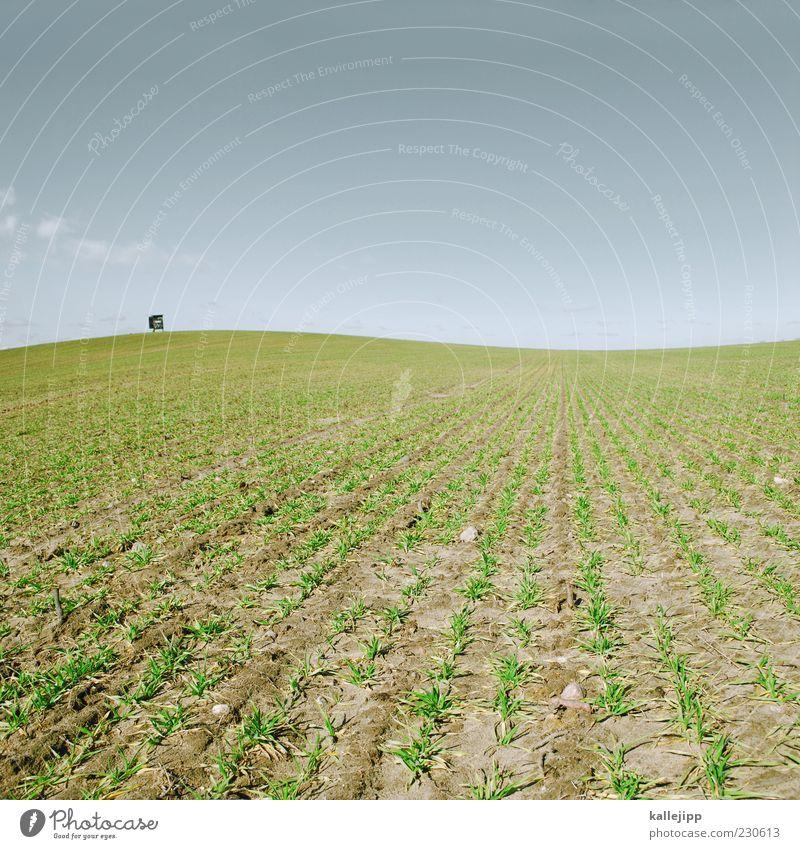 wachstum Himmel Natur grün Ferne Umwelt Landschaft Frühling Arbeit & Erwerbstätigkeit Horizont Feld Erde Klima Hügel Beruf Schönes Wetter Wirtschaft