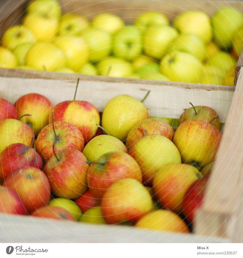 in der Box grün rot Ernährung Lebensmittel Gesundheit Frucht frisch süß Apfel Gesunde Ernährung Ernte Markt Bioprodukte Ware sauer Marktstand