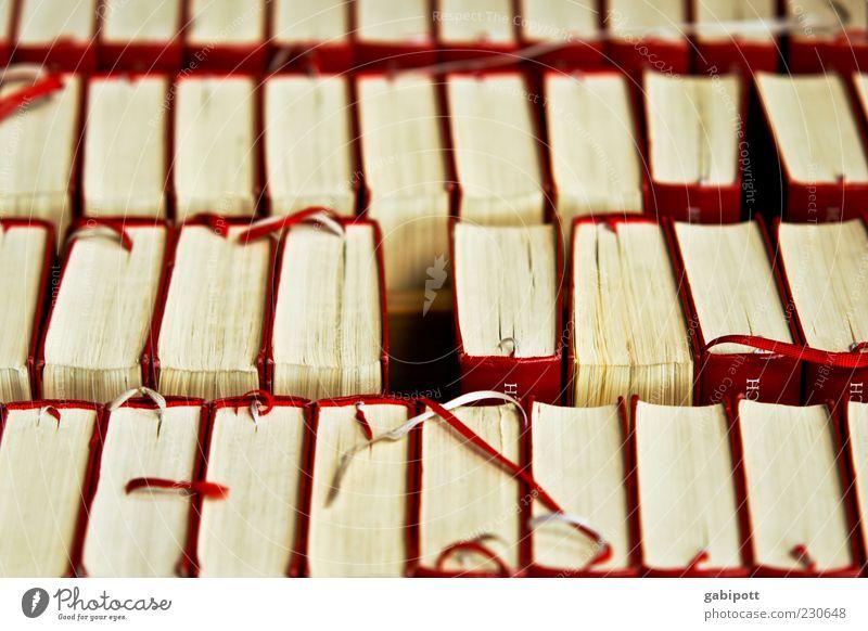 Printausgabe der evang. Kirche Printmedien Buch Gesangbuch Gebetsbuch Bibel rot weiß Religion & Glaube aufgereiht nebeneinander stehen sortieren Gedeckte Farben