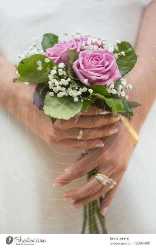 Hochzeitsstrauß Frau Mensch Natur Jugendliche schön weiß Hand Blume Erholung ruhig 18-30 Jahre Erwachsene Lifestyle Gesundheit Liebe natürlich
