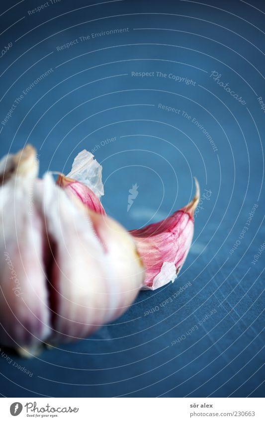 gesunde Würze blau weiß Foodfotografie Gesundheit Lebensmittel Ernährung Kräuter & Gewürze Gemüse lecker Bioprodukte Duft Geruch Stillleben