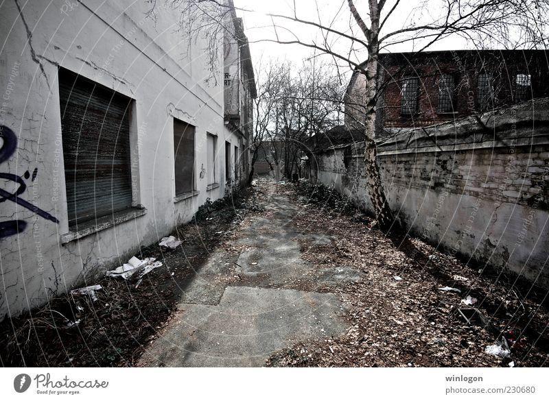 alt Baum schwarz Umwelt grau Erde Kunst Deutschland dreckig Armut trist Europa Industrie Technik & Technologie Medien Ruine