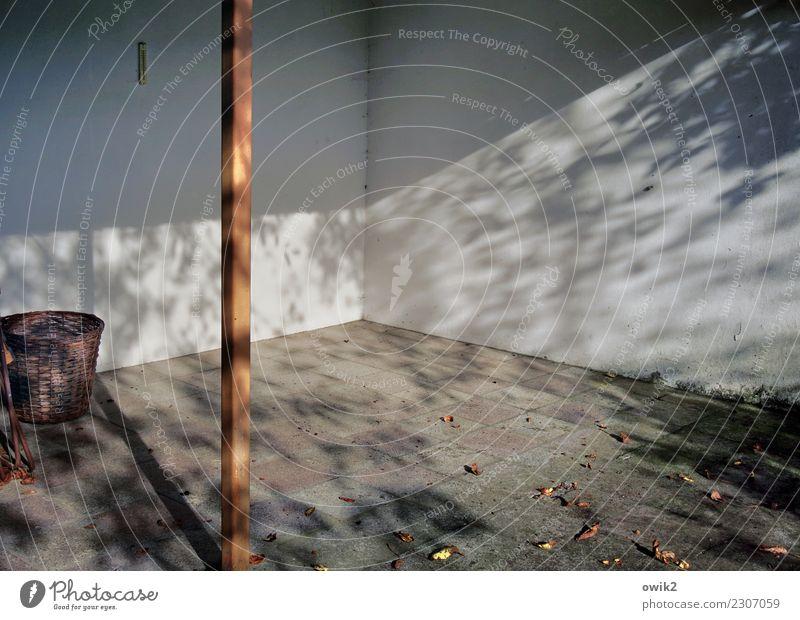 Unter Deck Herbst Blatt Herbstlaub Garten Mauer Wand Terrasse leer Strebe Korb Stein Beton Metall Idylle Vergänglichkeit Wandel & Veränderung Steinboden Ecke
