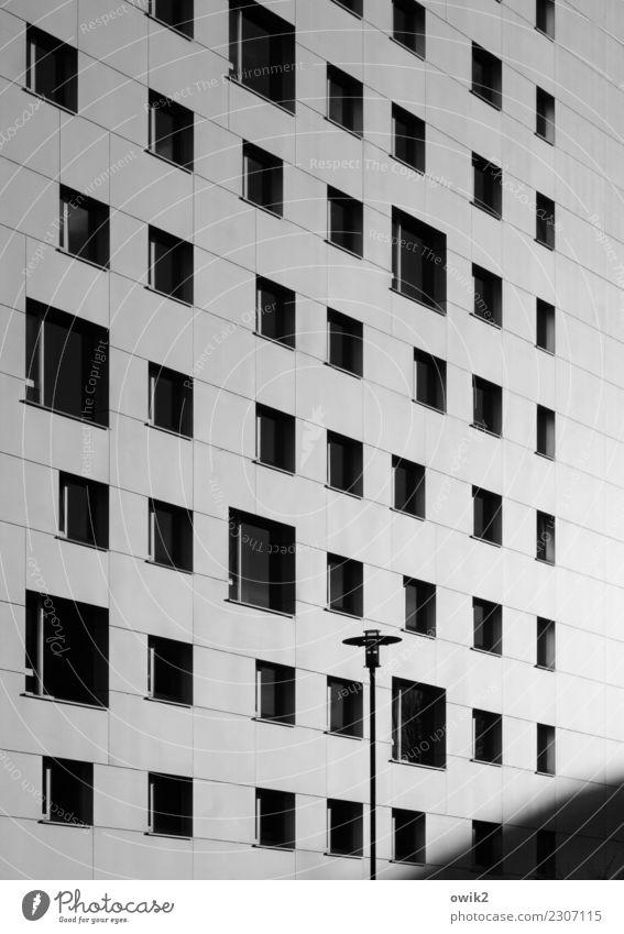 Kastendenken Häusliches Leben Haus Dresden Deutschland bevölkert Hochhaus Gebäude Mauer Wand Fassade Fenster Straßenbeleuchtung Laternenpfahl Zusammensein