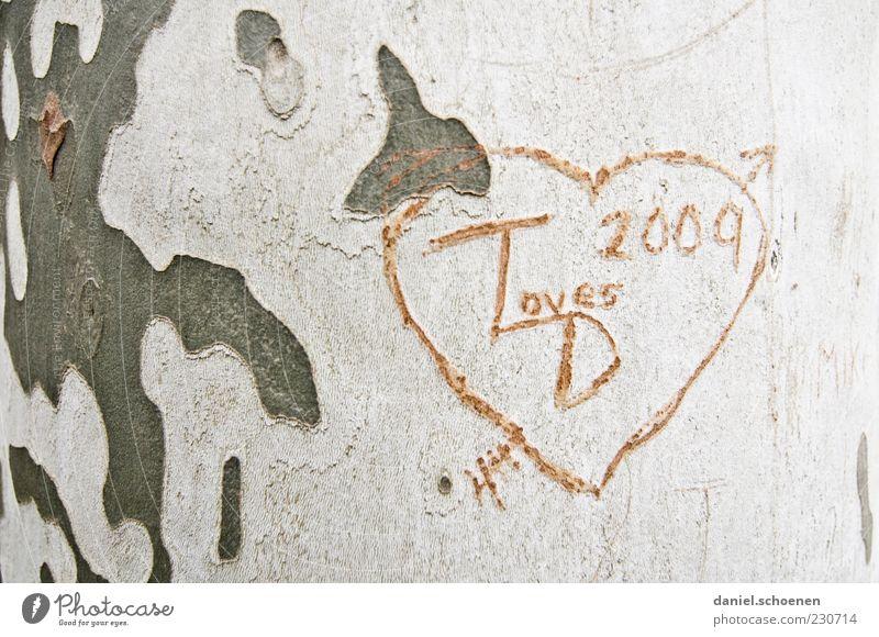 T liebt D Glück Holz Zeichen Herz Gefühle Lebensfreude Sympathie Freundschaft Zusammensein Liebe Verliebtheit Partnerschaft Gedeckte Farben Baumrinde
