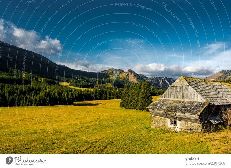 Ländliche Landschaft mit Bergen in Österreich alpin Bauernhof Baum Berge u. Gebirge Europa Felsen Forstwirtschaft friedlich Haus Herbst Klima ländlich