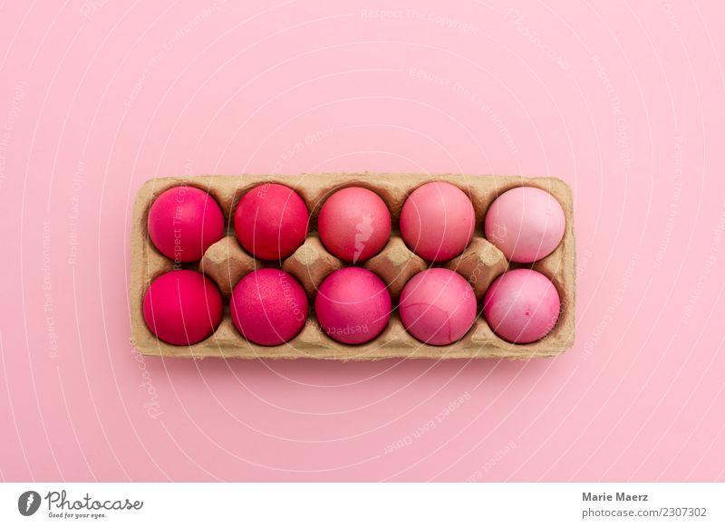 Ostereier ist Rosatönen gefärbt in Eierschachtel schön Farbe Essen Stil Lebensmittel außergewöhnlich Feste & Feiern rosa Design hell liegen ästhetisch frisch
