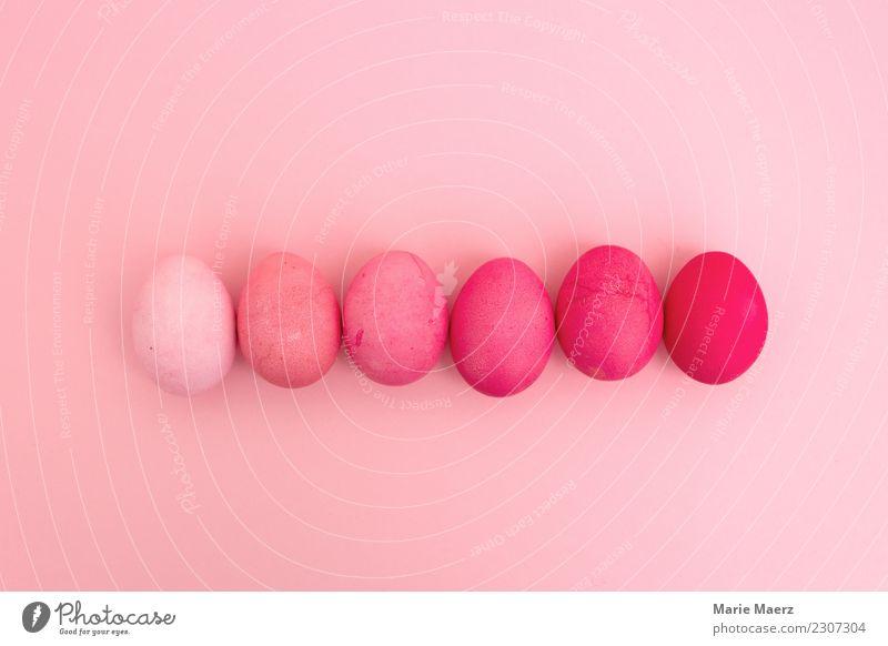 Rosa Farbverlauf aus gefärbten Ostereiern Stil Design Feste & Feiern Ostern liegen machen ästhetisch Coolness hell trendy rund schön rosa geduldig einzigartig