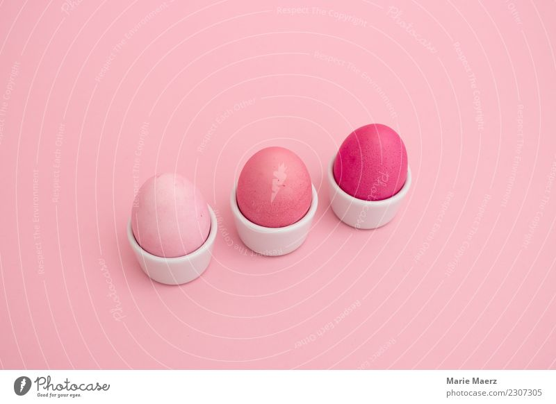 3 rosa gefärbte Eier in einer Reihe im Eierbecher Lebensmittel Ernährung Frühstück Stil Design Ostern Essen Blick ästhetisch außergewöhnlich Coolness
