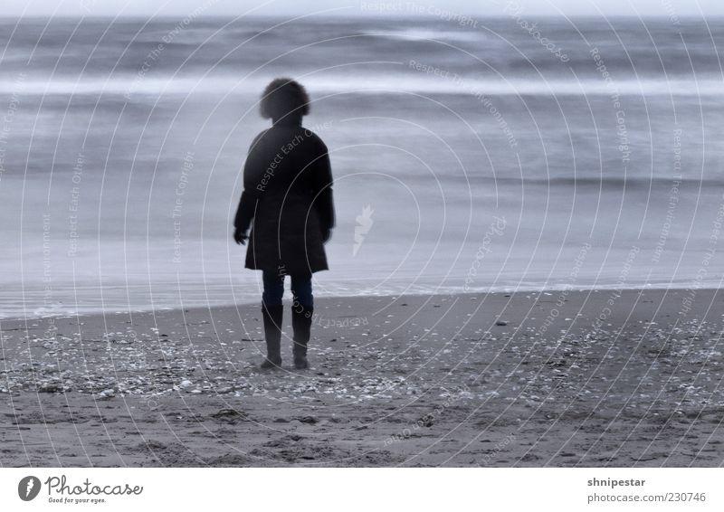 Eine Eismaus Mensch Natur Jugendliche Wasser Ferien & Urlaub & Reisen Meer Strand ruhig Erwachsene Erholung Sand Küste Wellen Wind Rücken Nebel