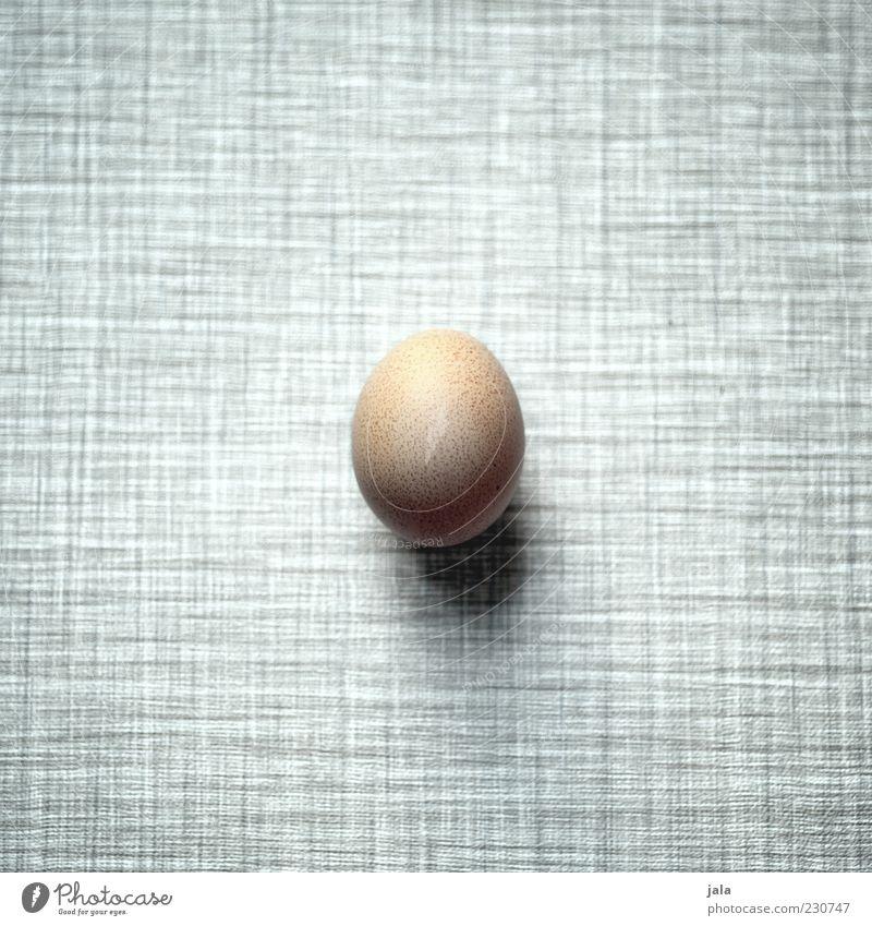 ei weiß schwarz Ernährung grau Lebensmittel braun frisch rund einfach Ei Bioprodukte Maserung minimalistisch Tischplatte Vogelperspektive Tier